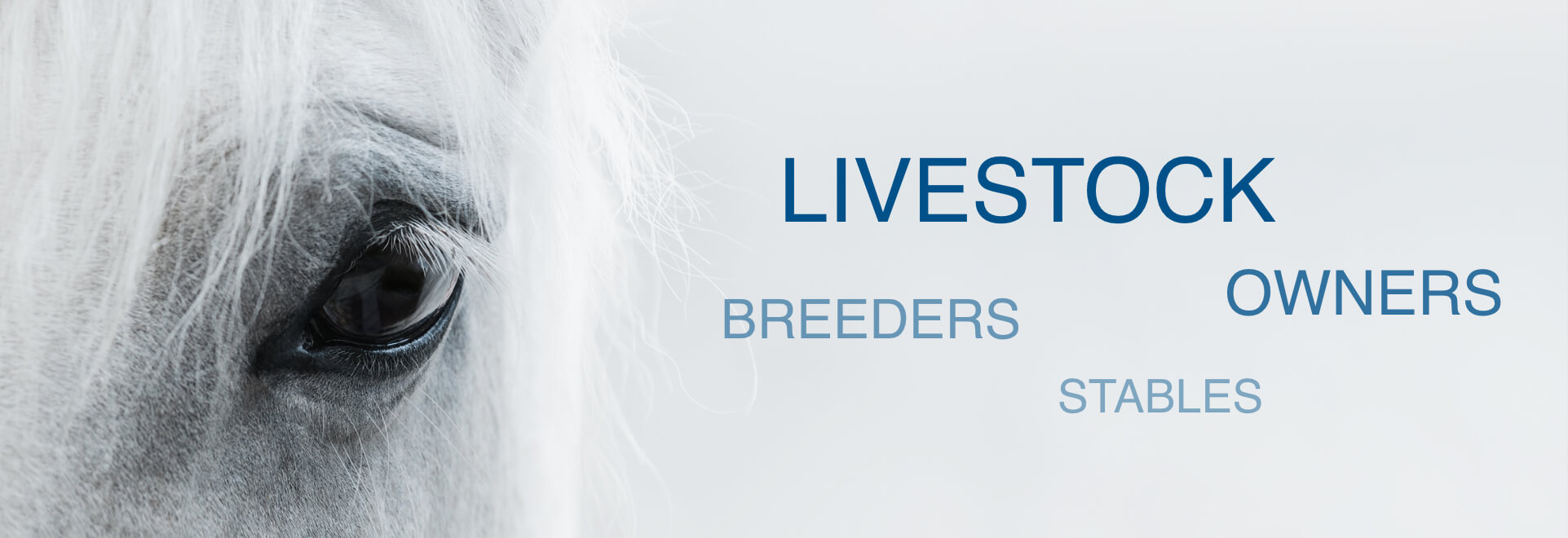 Livestock - Owners -Breeders